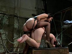 This slutty and super naughty siren AnnaBelle Lee is giving herself to the possession of that divine bitch Bobbi Starr. Fucking hard to watch the insanity!