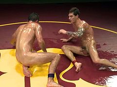 What are you waiting for? Watch these two homosexuals covered in oil sucking and touching each other's tally wackers. They are gay freaks!