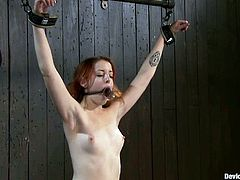This slender redhead babe is so beautiful. But her BDSM master doesn't care about her beauty and shows her no mercy, abusing her over and over again!