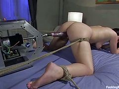 Busty brunette Brooke Lee Adams gets pulled by the nipples in her room. Then she spreads her legs wide and gets her coochie slammed by a sex machine.