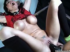 Look at these two horny and slutty lesbian chicks! They are going to make each other feel so fucking good, using some sex toys.
