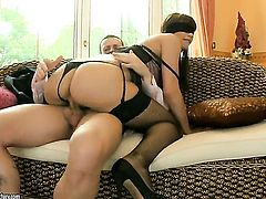 Brunette gal Eliska Cross finds her mouth filled with guys sturdy worm