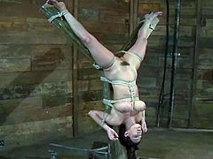 Curvaceous brunette chick gets tied up and gagged by her master. later on she gets her hairy pussy toyed with a dildo and a vibrator.