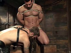 There's a special place were bound god work their magic on hot gay males! Join them in their vault and see how these superb hunks experience pain and pleasure beyond their wildest imagination. Tied by their balls or cock, humiliated and mouth gagged so they won't scream, these big boys love what they receive!