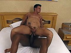 Salacious black tranny Suzanna Holmes shows her huge dick to some dude and lets him suck it. Then she drills the man's ass in the reverse cowgirl and other positions and they both enjoy it much.