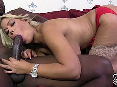 Lovely interracial sex story with a charming blond sex doll Bridgette B. She is so eager to have that black cock and it fucks her hard.