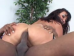Ava Devine take Prince's BBC