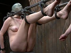 Hot blonde babe Star's head is encased in a breathing restricted latex hood, Watch how Claire clamps Star's cunt with the strongest clamps in the DB arsenal and uses them to suspend and hold in the large dick inserted into her wet cunt.Don't miss it!