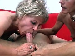 Tasty dick fulfills mature's needs during a nasty blowjob trio