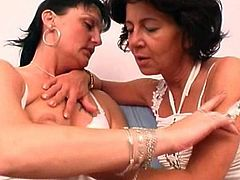 Nasty ladies are eager to lick and finger fuck eachother's hairy twats