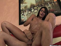 Nikki Daniels is an extremely sexy brunette babe! She got pumped hard in her tight horny pussy and got creampied with fresh cum!