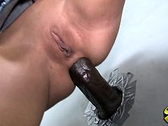 Charming Karina O'Reilley Serves A Blowjob To A Cock From A Gloryhole