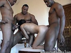 Sexy dark-haired girl called Curious is trying her best to satisfy three muscular black studs. She sucks their schlongs remarcably well and then gets unforgettably fucked and facialed.