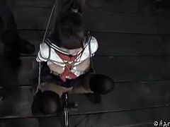 Hard Tied brings you a hell of a free porn video where you can see how the horny Japanese brunette model Marica Hase gets tied up in the dungeon and tortured.