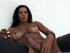 This horny shemale with nice round tits and fat cock,knows her talent for pleasuring herself.She grab her hot fat cock and strokes it really well.
