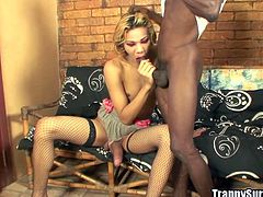 Entertain yourself by watching this blonde ladyboy, with natural tits wearing fishnet stockings, while she gets nailed hard by a kinky fellow.