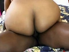 Full figured chubby ebony hoe treats black 9 incher with sloppy blowjob. Phat gal ride that black meat stick in cowgirl pose and makes ass quake with her giant rump.