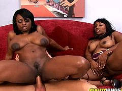 Prepare your cock for these two ebonies, with giant knockers and a great butts, while they touch each other when a guys is banging them!