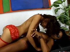 Hot ebony gals Mya Mason and Vixen Fyre lick each other's pussies like mad