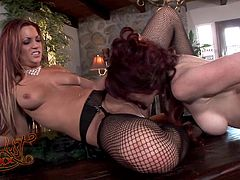 You'll be busting a nut in no time with this great lesbian scene as these gorgeous ladies have a lesbian scene among one another as they wears sexy lingerie.