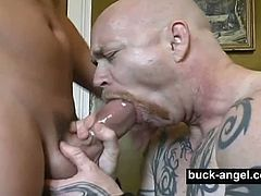 The legendary man with pussy Buck Angel is ready to have some fun again. His buddy Rob Roding got his stiff meaty cock eaten and sticks it deep into that male pussy.
