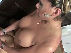 Light haired busty tranny got nice deep throat. She got too horny after that and set to pound loose booty hole of her skinny boy. Watch this dirty TS anal fuck in Fame Digital sex clip!