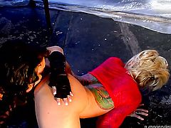Janine Lindemulder finds herself getting her beaver tongue fucked by lesbian Jessica Jaymes