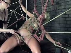 Mistress Claire acts like a black widow! She got Vendetta trapped in her web and now feasts with her body. The blonde can't move and she's scared of what will happen to her as Claire plays with her pussy in a very kinky way. Damn this whore has her ways with ropes and punishments