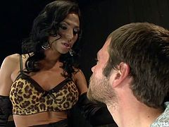 Jesse Carl has been invited to see his transsexual mistress Jaquelin Braxton. The two kiss each other and he grabs her cock over her panties. She orders him to take off her pantyhose and lick her soles and suck her toes. After he sucks her toes he moves on to sucking her cock.