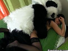 Naughty teacher takes off her sexy outfit showing out her ass and tits and plays with her huge plush panda bear toy's pink dildo.
