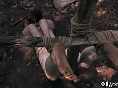Hazel Hypnotic may not seem like it but she is terribly shy. Most people consider the woods to be far away from any kind of interference, but standing out here naked she cannot help but wonder if there are any hikers near. They may come looking for the source of all of those screams, but when they see the humiliating way PD has her tied up, like an offering to the perversions of the forest.