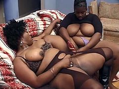 Witness this video where two BBW ebonies, with huge breasts wearing sexy lingerie, play with giant dildos and moan like a couple of horny cats!