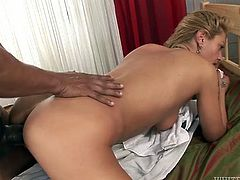 Insatiable light haired whore with big titties got her ever hungry pussy fucked tough by that huge chocolate sausage in different styles. Mostly it was mish and doggy ones! Look at this interracial fuck in Fame Digital porn video!