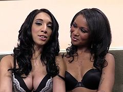 Entertain yourself by watching these brunettes, with big knockers wearing sexy bras, while they talk about their hard sex experiences.