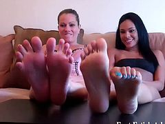 Everybody would love to worship these sexy ladie's feet. Just take a look at them talking dirty and begging you to cum allover them to satisfy all of their fantasies.