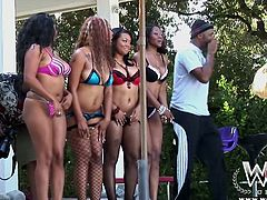 You are crazy, dude, if you are going to skip this WCP club sex tube video featuring several big bottomed ebony chicks. They look great in bikini and black fishnet stockings.