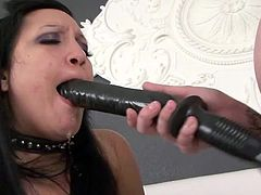 Dirty babes in leather costumes sharing a big toy between their cramped vags