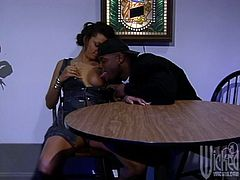 Have fun with his hardcore scene where the sexy ebony babe Nikki Darling is fucked silly by a guy with a thick black cock.