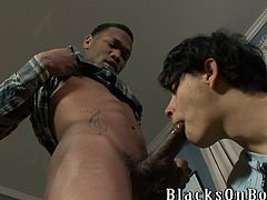 Salacious queer called Casanova is having interracial threesome sex with his friends. The white fairy pleases the black hunks with a blowjob and then gets his butt pounded doggy style.