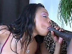 Voluptuous black hottie in one dirty hardcore along a strong male