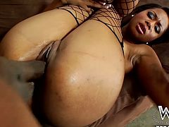 Horny and sexy dark haired bitch with awesome body and in sexy stockings gets her dripping pussy fucked hard. Have a look at this chick in WCP Club xxx club.