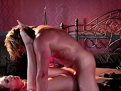 Professional Evan Stone and sexy Maddy OReilly