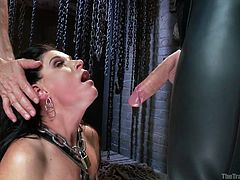 Like when tied girls with chain collars get down on their knees? This amazing brunette milf is face slapped and obliged to suck a huge dick. Her ass is stretched and her shaved pussy is shown to the camera in a clear closeup. Watch her screaming when a big cock is pulled in her asshole from behind