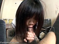 Forbidden East brings you a hell of a free porn video where you can see how a kinky Japanese brunette slut gives a great pov blowjob while assuming very hot poses.