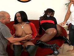 Nothing beats a wild interracial foursome along two black angels eager for wild and nasty stuff