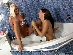 Press play on this hot lesbian scene where these beautiful ladies play with one another and sex toys in a bathtub.