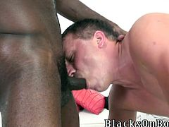 Two horny black gay hunks are having fun with a handsome dude. They make the guy suck their BBCs and drill his juicy asshole by turns.