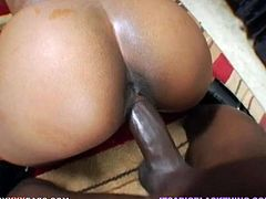 That horny African stud likes to hammer big assed blond chicks in doggy position. That's his landmark. Watch it in My XXX Pass sex video!