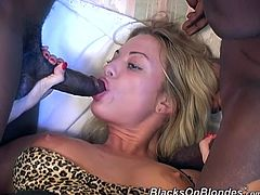 Bootylicious Savannah shakes the ass and sucks big black cocks. This lustful blondie gets banged several times in a row. She enjoys a lot because she loves sex more than anything else.