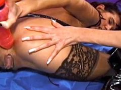 Adorable scenes of pure masturbation between horny lesbos in sexy lingerie along their trusty toy cocks